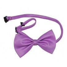 Papion  - violet....OFERTA !!!